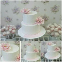 Verlobungstorte und cakepops...